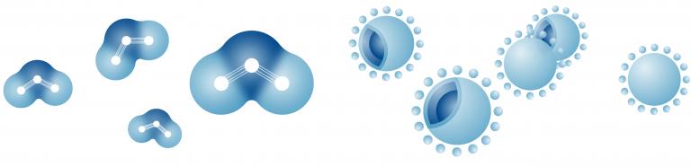 ウイルスや菌